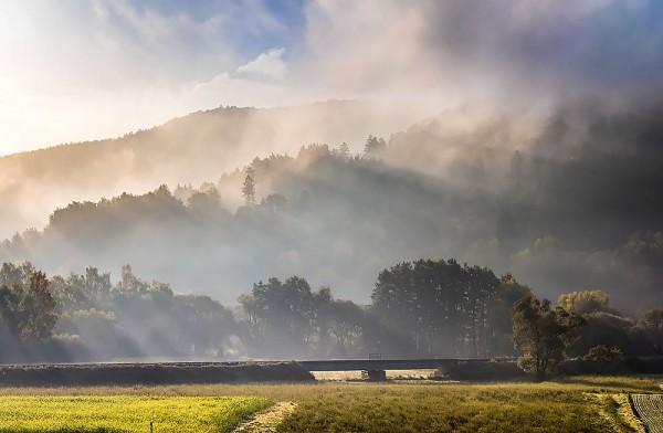 "Wandbild Motiv ""Wiesenttal Nebel"""